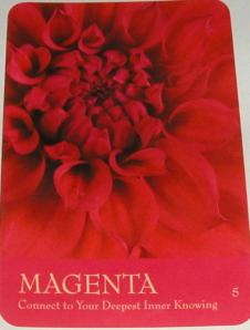 Magenta card