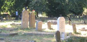 Crows at Brompton Cemetry