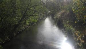 River Rae - Birmingham