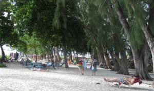Miami Beach - Barbados