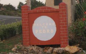 Welcome to Pedro